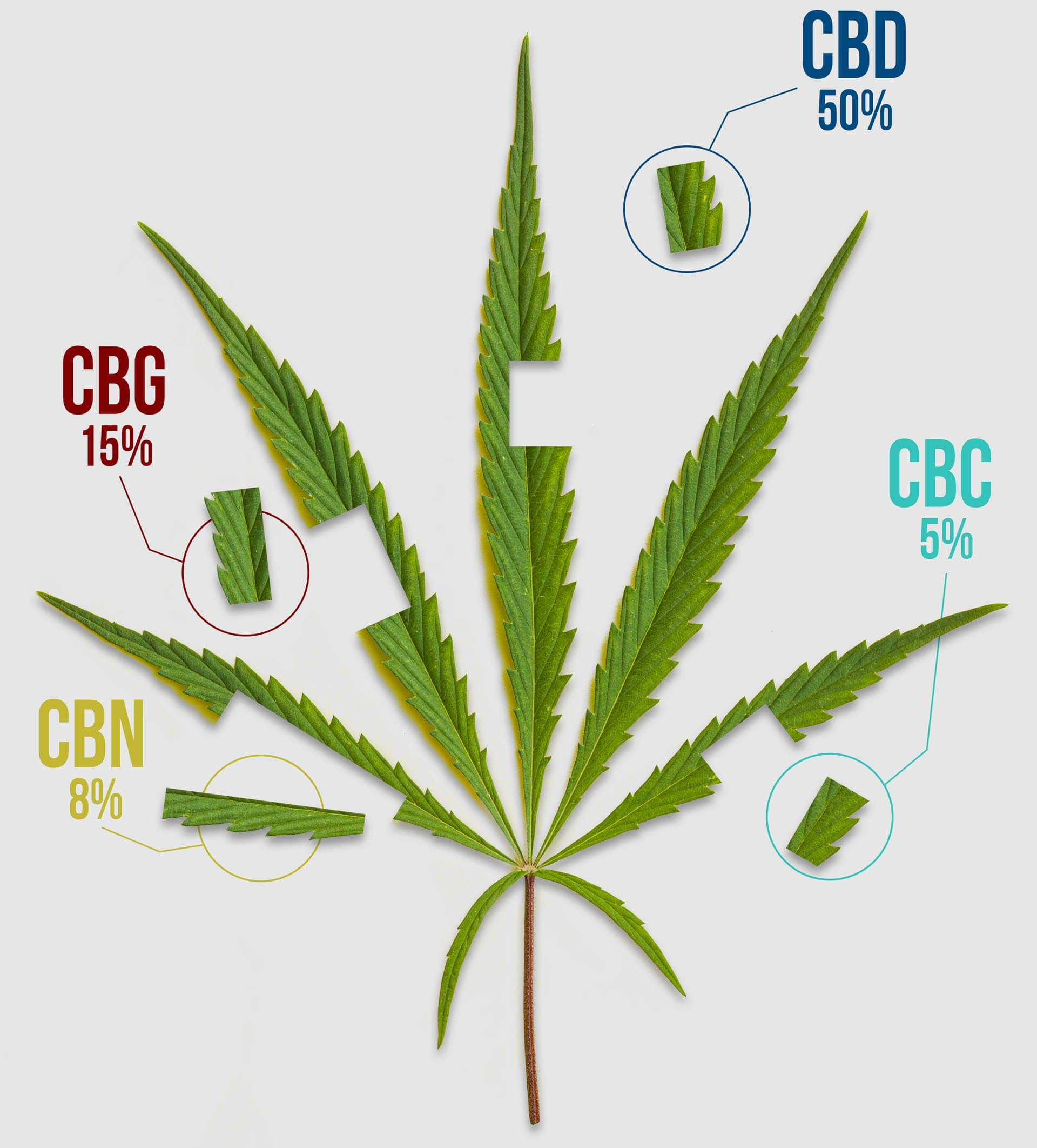 New Approach Science Backed CBD Global