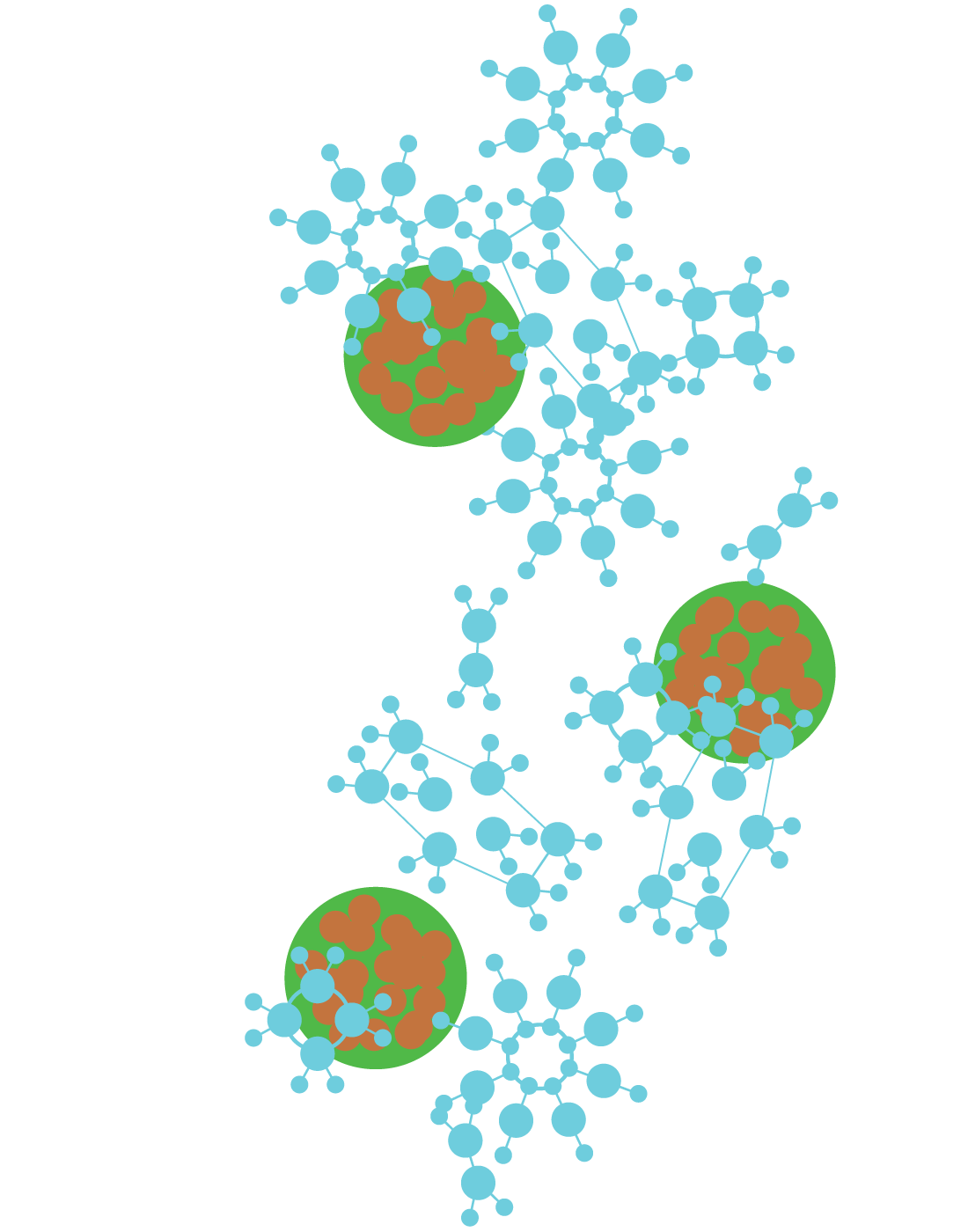 True Nano Particle Stage 3 CBD Global