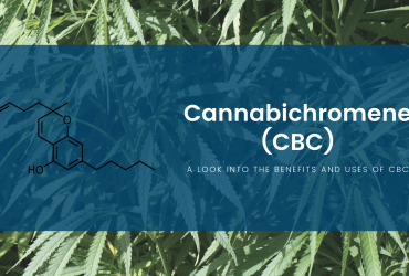 A Look Into the Benefits and Uses of Cannabichromene (CBC)