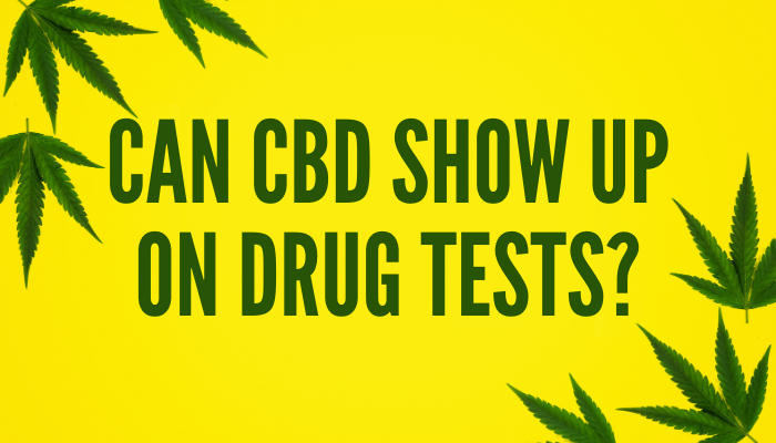 Can CBD Show Up on Drug Tests?